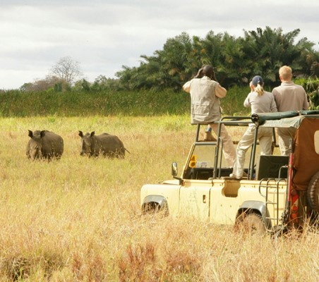 bushtreksafaris Rhino tracking Safari tourists in 4X4 come across three rhinos in the long grass